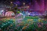 Philadelphia Flower Show 2019 will bring visitors for its massive floral display