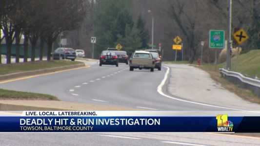 Towson University student killed in hit-and-run crash