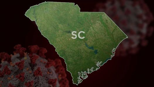 DHEC: Coronavirus cases in SC top 10,000; 10 more deaths reported