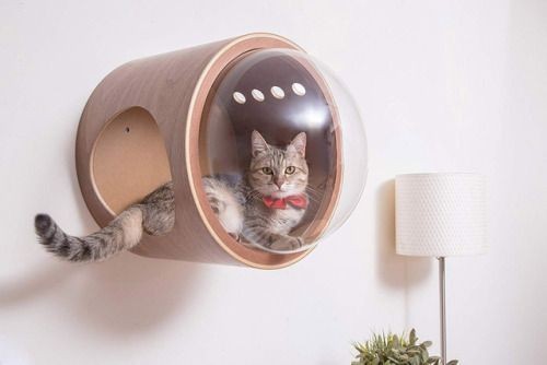 No One Will Know This Is a Space-Age Napping Pod for Your