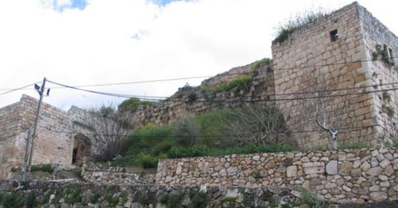 Ancient Winery Discovered in Israel Is 'Largest Crusader-Era Winery Yet'