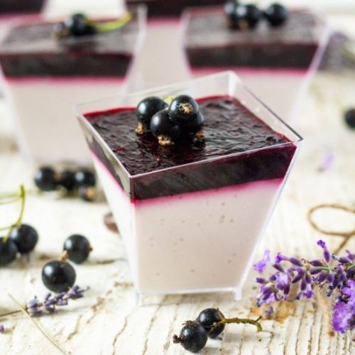 Lavender Black Currant Panna Cotta