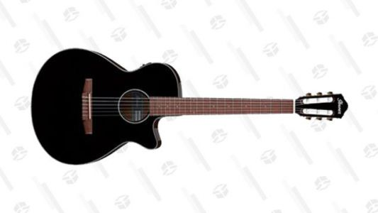 Its Price Is Unpredictable but in the End It's Right, This Ibanez Is $299