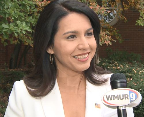 NH Primary Source: Here's why Tulsi Gabbard 'really hated' this week's debate