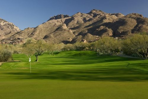Golf 101: Going Green in Tucson
