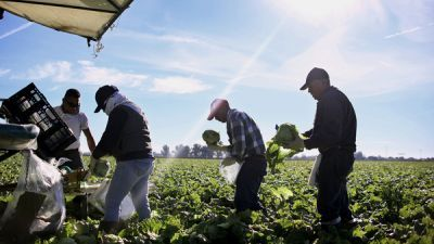 Farm-To-Table May Feel Virtuous, But It's Food Labor That's Ripe For Change