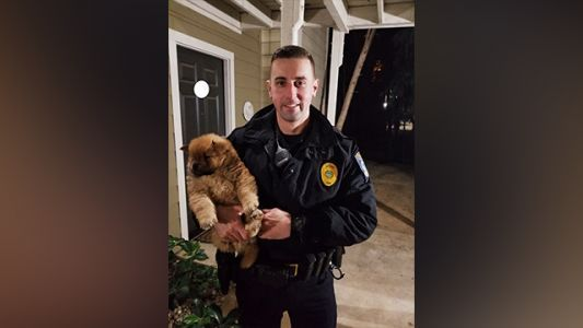 Citrus Heights PD: Pair buys puppy with fake money, steals wallet