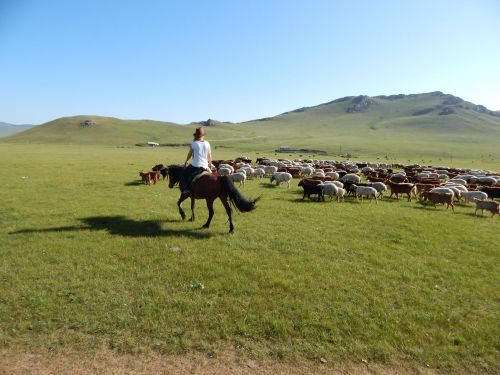 Eight Lakes Horseback Tour - TTR Mongolia