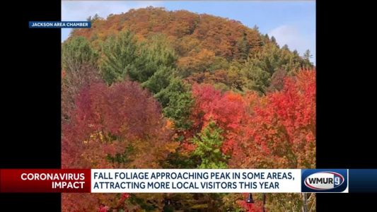 Fall foliage attracting more local visitors, approaching peak in some areas