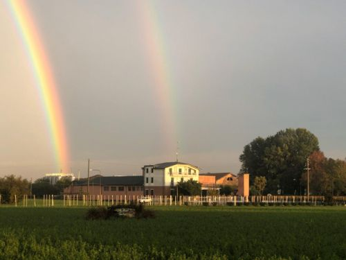"""Letter from Italy: """"A rainbow for the colors of life"""" by Alicia Lini"""