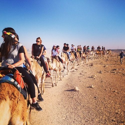 Israel endorses the exotic desert to lure tourists