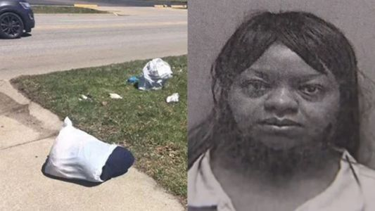 Police: Mother put infant girls in suitcase, left them on side of road