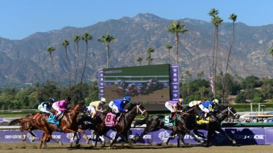 Why Have 21 Horses Died At A California Racetrack Since December?