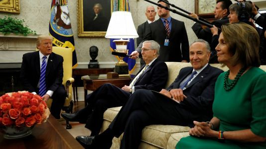 Trump just said a DACA deal with Democrats can't include 'CHAIN MIGRATION' - here's what he means