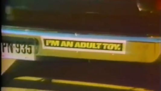 In 1978, Dodge Wanted To Sell Us 'Adult Toys'