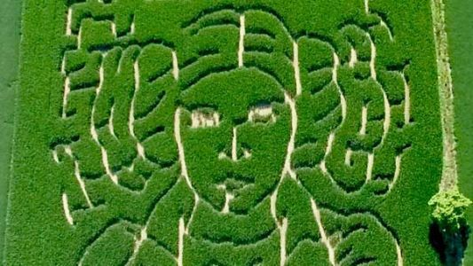 Maze the force be with you: Farmer pays tribute to Princess Leia