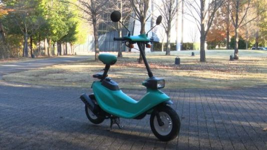Let's Go For A Jaunty Ride Around A Park On A Honda Zook
