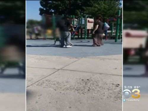 Police are investigating a video that appears to show a woman kicking a young boy at a playground