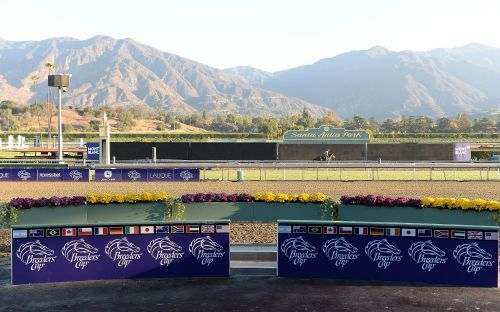 Santa Anita suspends racing after 21st horse fatality since Dec. 26