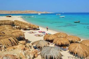 Red Sea Riviera hotspot launches its first pet-friendly hotel