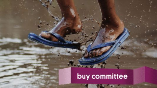 Buy Committee: Can I Do Better Than Rainbow Sandals?