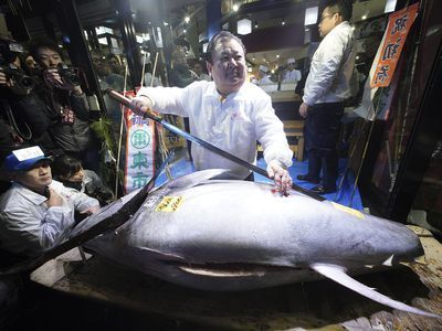 Massive Bluefin Tuna Rakes in $323,000 at Tsukiji Fish Market Auction