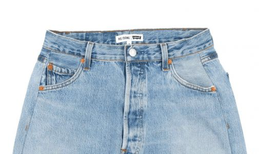 Whitney Wants to Live Exclusively In Vintage Denim Skirts