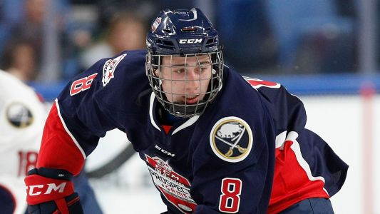 Introducing Quinn Hughes, the NHL's next hot American defense prospect