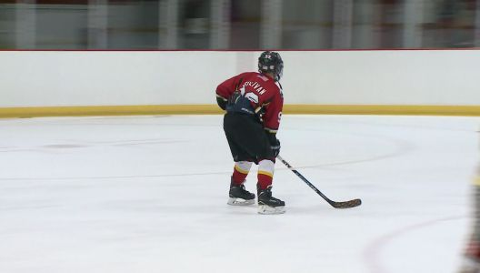 12-year-old hockey player donating for every hat trick
