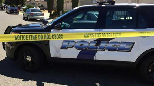 PD: Man stabs 2 family members at Elk Grove home