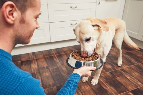 'Nutritional high ground': Petco, others respond to demand for natural dog, cat foods