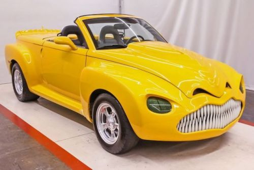At $29,988, Could You Face Owning This Custom 2005 Chevy SSR?