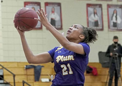 Plum girls are 7th basketball team to drop from WPIAL playoffs due to COVID-19