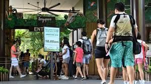 Singapore tourism companies all geared up to make profit from SingapoRediscover vouchers