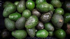 Americans Would Run Out Of Avocados In 3 Weeks If Trump Shuts Down U.S.-Mexico Border