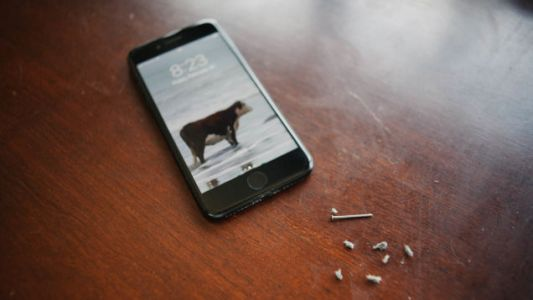 Look How Disgusting Your iPhone's Lightning Port Probably Is