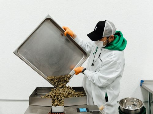 A craft marijuana brand has raised a total of $50 million from VCs including an early Facebook investor - here's why it's a big deal for the industry