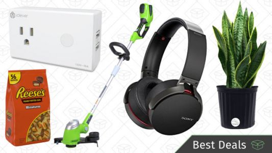 Sunday's Best Deals: Cole Haan, Sony Headphones, Plants, Greenworks Tools, and More