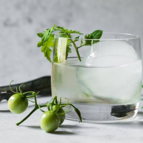 Tomato Vine Cocktail