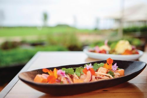 Delectable Food & Wine in NSW's Northern Rivers & Coastal Region