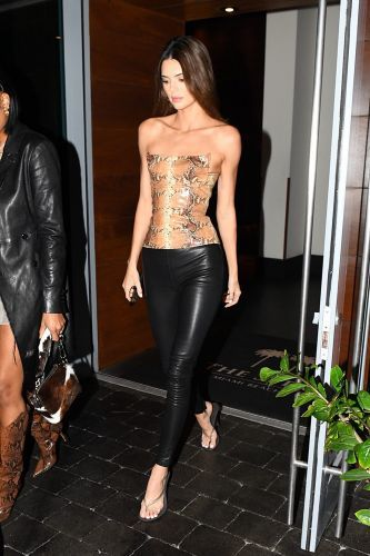 Kendall Jenner Rocks ~Sssstylish~ Snakeskin Bustier and Leather Pants During a Night Out in Miami