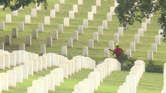 Arborists volunteer to clear, trim trees at Leavenworth National Cemetery