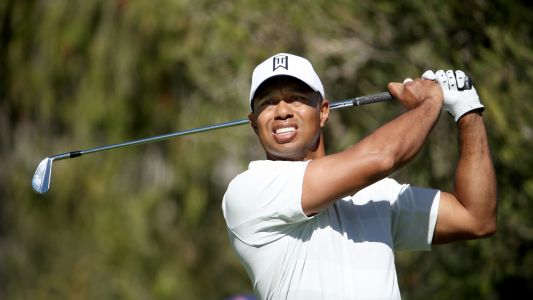 Tiger Woods, Steve Stricker appointed USA Ryder Cup vice captains