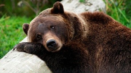 Bitcoin's 3rd bear market in decade could be its worst, plunging 80 percent from last year's high