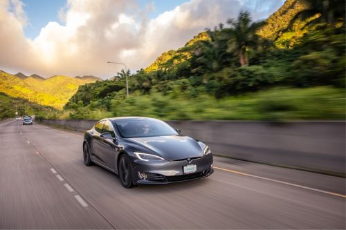 Enter for a Chance to Win a New Tesla While Donating to Save the Rainforest