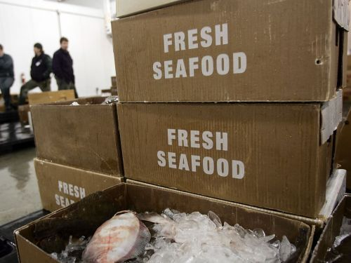 Major Restaurant Supplier of Sustainable Seafood Accused of Mislabeling Fish