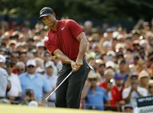 Will Tiger Woods be chosen for Ryder Cup?