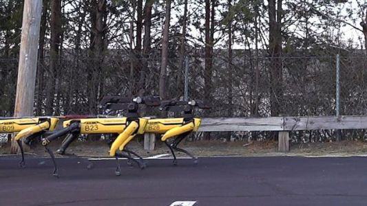 It Only Takes 10 Robot Dogs to Tow a Truck