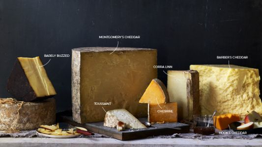 The 10 Cheeses You Need to Know to Understand All Cheese Ever
