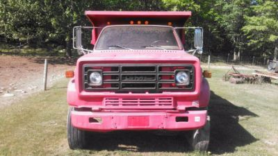 Please Stop Me From Buying This Giant Pink Dump Truck